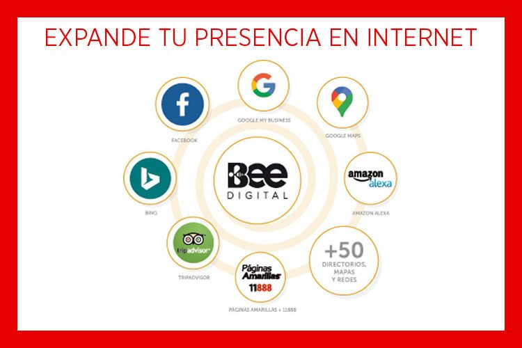 Bee Digital presencia en internet actualizada